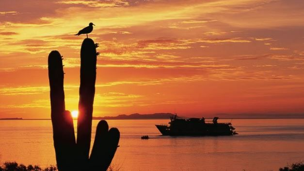 baja california a remarkable journey